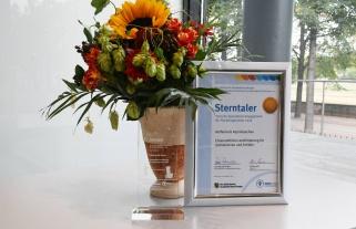 l_sg8_6985_kl Sterntalerpreis - Preisträger - Preisträger 2018